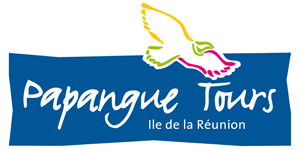 Papangue tours logo